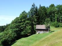 Landbouwbedrijven en weilanden van het Ostschweiz-gebied royalty-vrije stock fotografie