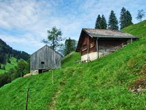 Landbouwbedrijven en weilanden van het Ostschweiz-gebied royalty-vrije stock afbeeldingen