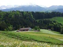Landbouwbedrijven en weilanden van het Zurchersmuhle-dorp stock afbeelding