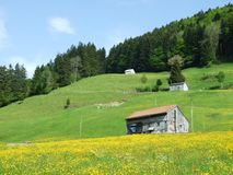 Landbouwbedrijven en weilanden van het Zurchersmuhle-dorp stock foto's