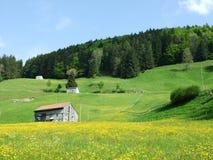 Landbouwbedrijven en weilanden van het Zurchersmuhle-dorp royalty-vrije stock afbeelding