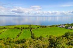 Landbouwbedrijven met koeien en paarden in Burren-maniersleep met de baai van Galway royalty-vrije stock afbeelding