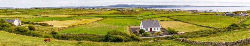 Landbouwbedrijven met weide en Liscannor-dorp op achtergrond stock foto's
