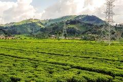 Landbouwbedrijven op Hellingen in Rwanda, Oost-Afrika royalty-vrije stock afbeelding