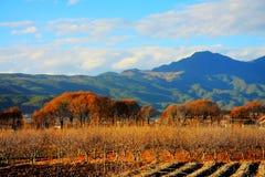 Landbouwbedrijven op het Plateau van Qinghai Tibet in Wintertijd stock foto