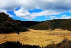 Landbouwbedrijven op het Plateau van Qinghai Tibet in Wintertijd stock fotografie