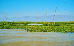 Landbouwbedrijven op water, Inle-Meer, Myanmar stock foto's