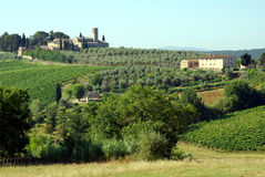 Landbouwbedrijven in Toscanië, Italië Royalty-vrije Stock Afbeelding