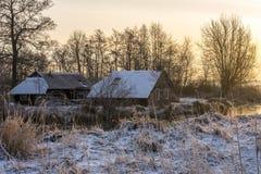 Landbouwbedrijven in wintertijd in wieden-Weerribben stock foto