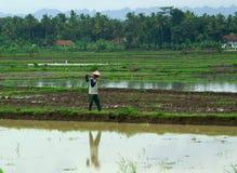 Landbouwer Royalty-vrije Stock Fotografie
