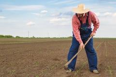 Landbouwer Stock Foto's