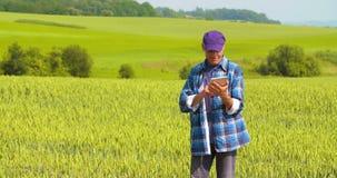 Landbouwer Analyzing Crops While die Digitale Tablet in Landbouwbedrijf gebruiken stock footage