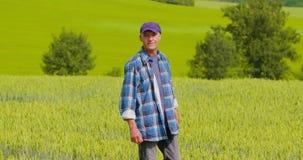 Landbouwer Analyzing Crops While die Digitale Tablet in Landbouwbedrijf gebruiken stock video