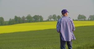 Landbouwer die bij landbouwbedrijflandbouw werken stock footage