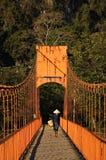 Landbouwer die brug in Vang Vieng in Laos kruist Stock Fotografie