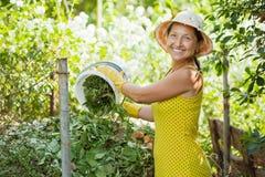Landbouwer die compost maakt royalty-vrije stock afbeelding