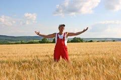 Landbouwer die de gerst inspecteert Royalty-vrije Stock Foto's