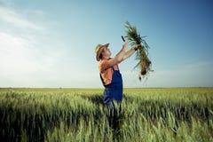 Landbouwer die de kwaliteit van tarwe met vergrootglas controleren stock foto