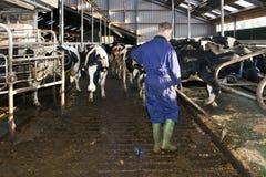Landbouwer die een stal schoonmaakt Stock Foto