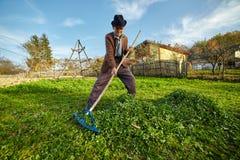 Landbouwer die gras verzamelen om de dieren te voeden Royalty-vrije Stock Afbeelding
