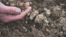 Landbouwer die grond in handen onderzoeken Gebied stock videobeelden