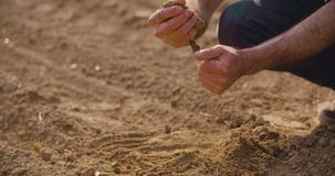 Landbouwer die grondkwaliteit op vers gecultiveerd gebied onderzoeken stock footage
