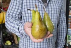 Landbouwer die het fruit van de peer in zijn handen houden royalty-vrije stock afbeeldingen