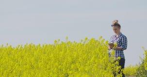 Landbouwer die raapzaad bloeiende installaties onderzoeken stock videobeelden