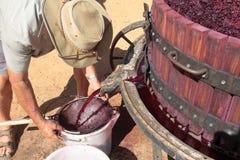 Landbouwer die rood druivesap voor wijnbereiding haalt Royalty-vrije Stock Foto's