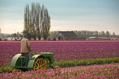 Landbouwer die Zijn Tractor berijdt royalty-vrije stock afbeeldingen