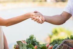 Landbouwer en klanten het schudden handen Royalty-vrije Stock Afbeelding