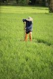 Landbouwer in het gecultiveerde land Royalty-vrije Stock Foto's