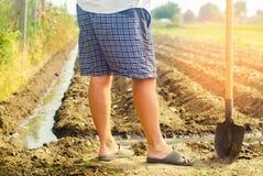 Landbouwer het water geven landbouwgewassen, platteland, nationaal irrigatie, stock afbeeldingen