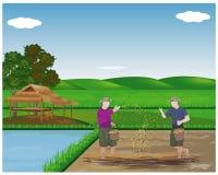 Landbouwer het zaaien rijst stock illustratie