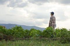 Landbouwer in landbouwgrond royalty-vrije stock foto's
