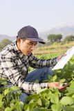 Landbouwer Man Royalty-vrije Stock Afbeelding