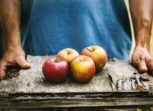Landbouwer met appelen royalty-vrije stock afbeeldingen