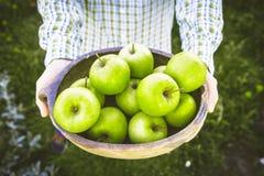 Landbouwer met appelen royalty-vrije stock afbeelding