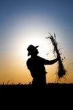 Landbouwer op een gebied van tarwe in de zonsondergang stock foto