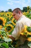 Landbouwer op een zonnebloemgebied royalty-vrije stock fotografie