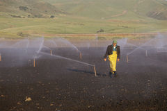 Landbouwer op irrigatiegebied Royalty-vrije Stock Foto