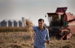 Landbouwer op sojaboongebied tijdens oogst stock afbeelding