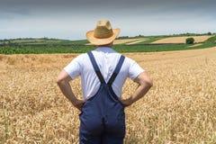 Landbouwer op tarwegebieden Stock Fotografie