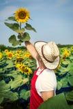 Landbouwer op zonnebloemgebied Stock Foto
