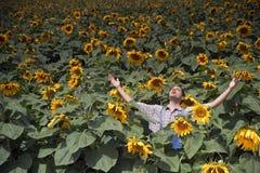 Landbouwer op zonnebloemgebied Stock Foto's