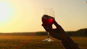 Landbouwer Pouring een Glas Witte Wijn agains de Zonsonderganghemel Unrecogizable mannelijke hand die een wijnglas op terras houd stock video