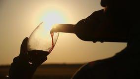 Landbouwer Pouring een Glas Witte Wijn agains de Zonsonderganghemel Unrecogizable mannelijke hand die een wijnglas op terras houd stock videobeelden