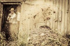 Landbouwer Shoveling de Paardmest stock foto