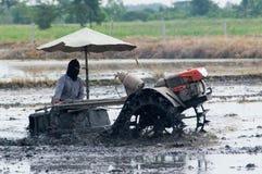 Landbouwer in Thailand dat het padieveld voorbereidt Stock Foto