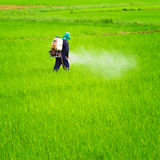 Landbouwers bespuitend pesticide royalty-vrije stock foto